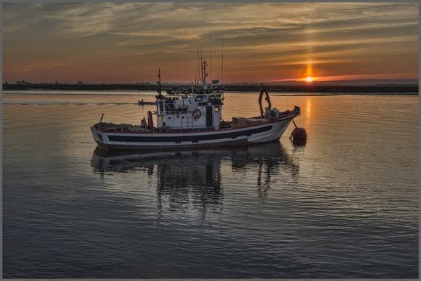 industria-pesca